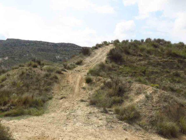 Amigos de los Humedales del Sur de Alicante