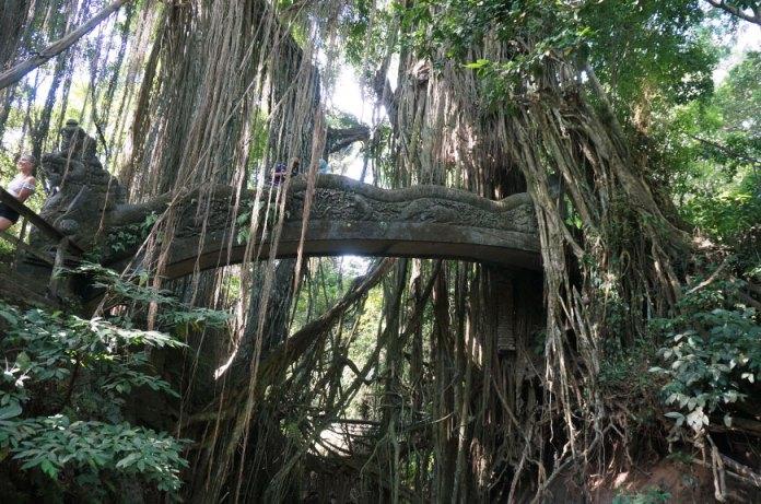 monkey-forest-ubud-bali-2-min