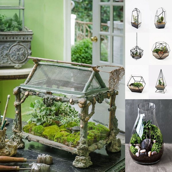 Terrarium Collection - Wedding Gifts - A2zWeddingCards.