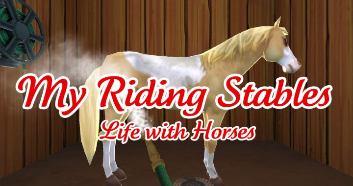 My Riding Stables – Life with Horses
