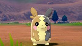 Pokémon Sword and Pokémon Shield Galarian Region Screenshot