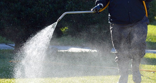Defining the Necessity to Fertilize Your Lawn in the Fall