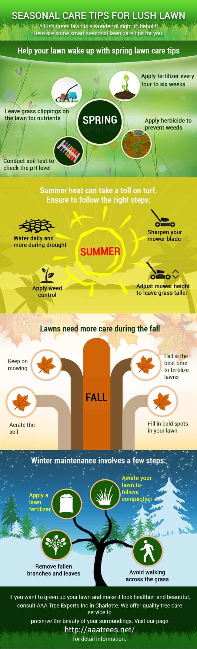 Lush lawn, season lawn care tips infographics