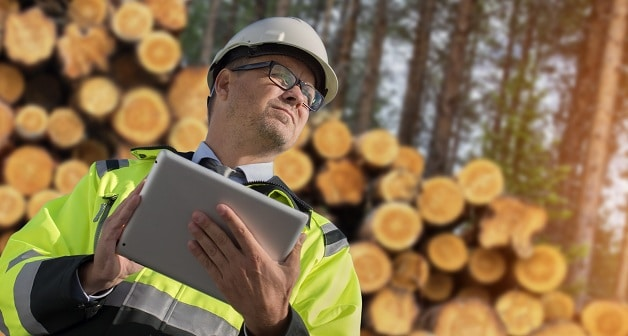 Evaluating the Risk of Trees Falling