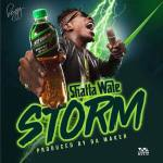 Shatta Wale – Storm (Prod. By Willis Beatz)