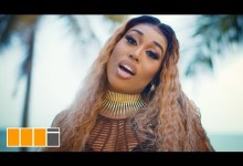 Photo of Fantana – New African Lady (Official Video)
