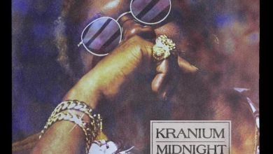 Photo of Kranium – Flirtin'