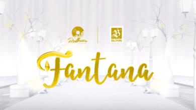 Photo of Official Video: Fantana – Rich Gyal Anthem