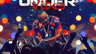 Photo of Tommy Lee Sparta – Under Vibes(Prod. By Dinesty King)