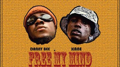 Photo of Danny Bee x Kane – Free My Mind (Mixed By D-Hulkbeatz)