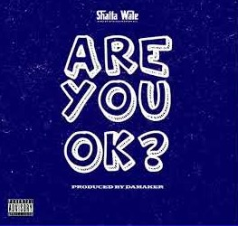 Shatta Wale – Are You Ok? mp3 download