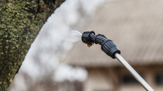 How long does pest control treatment last?