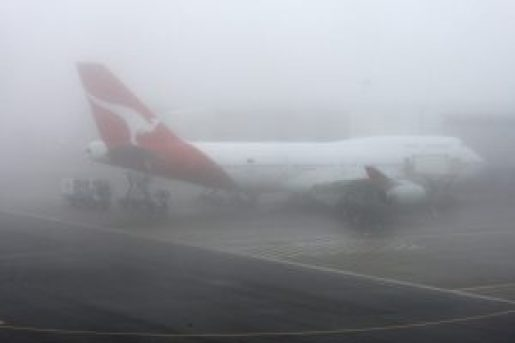 dense fog covers delhi and ncr
