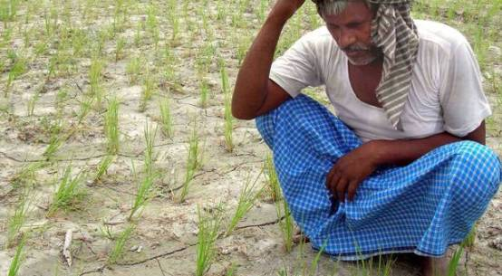 bjp government is making fun of farmers in india