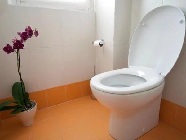 Toilet कैदी