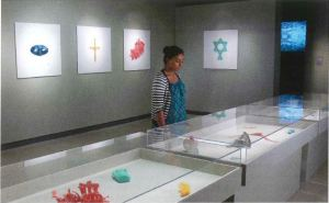 A woman gazes into a case in a gallery.