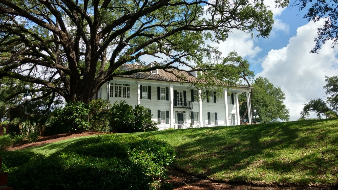 An exterior shot of a historic home shaded by a large tree and overlooking an expansive lawn.