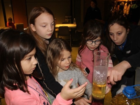 Students in a workshop looking at material in a lab beaker