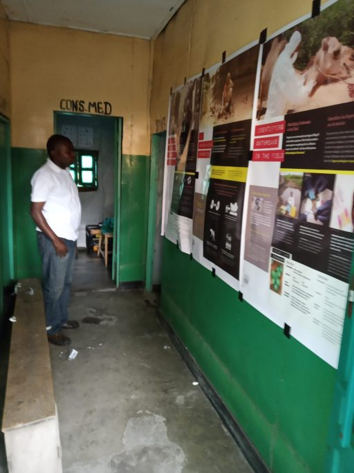 A man in white shirt and jeans looks at a green wall with 3 posters taped up.