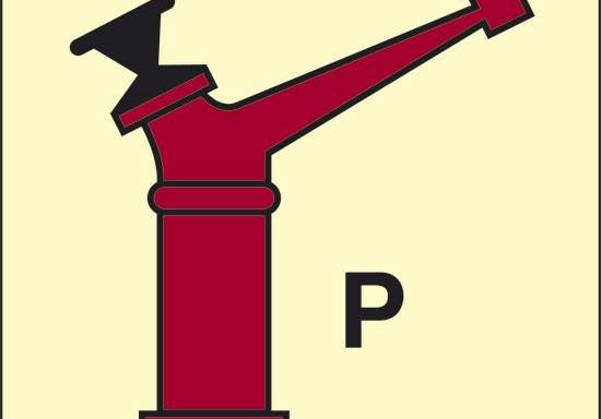 P (lancia a brandeggio erogatore polvere) luminescente