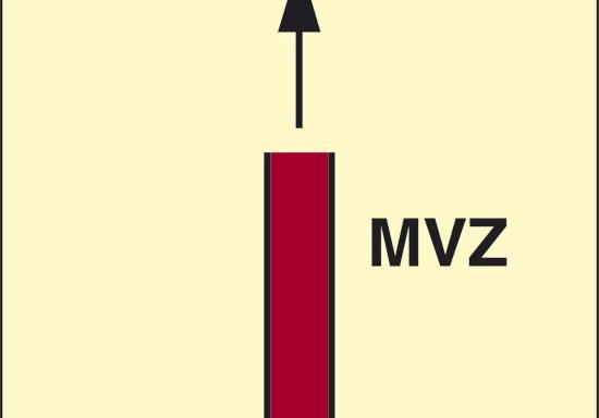 MVZ (zona verticale principale) luminescente