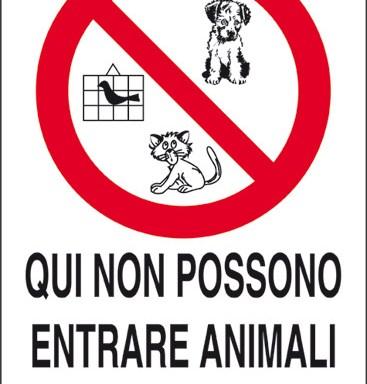 QUI NON POSSONO ENTRARE ANIMALI DOMESTICI