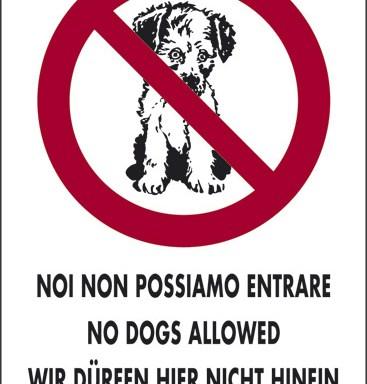 NOI NON POSSIAMO ENTRARE NO DOGS ALLOWED WIR DÜRFEN HIER NICHT HINEIN NOUS NE POUVONS PAS ENTRER