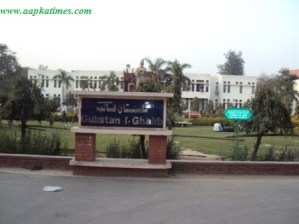 Jamia introduces six new courses and discontinue two courses
