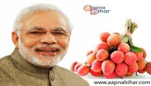 नीतीश कुमार ने प्रधानमंत्री नरेन्द्र मोदी को भेजी मुजफ्फरपुर की शाही लीची
