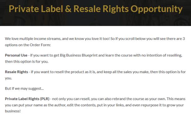 Big Business Firesale PLR Package by Edmund Loh Reviews