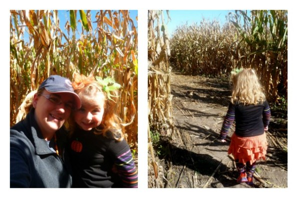 Pumpkin Patch Pizzazz Corn Maze