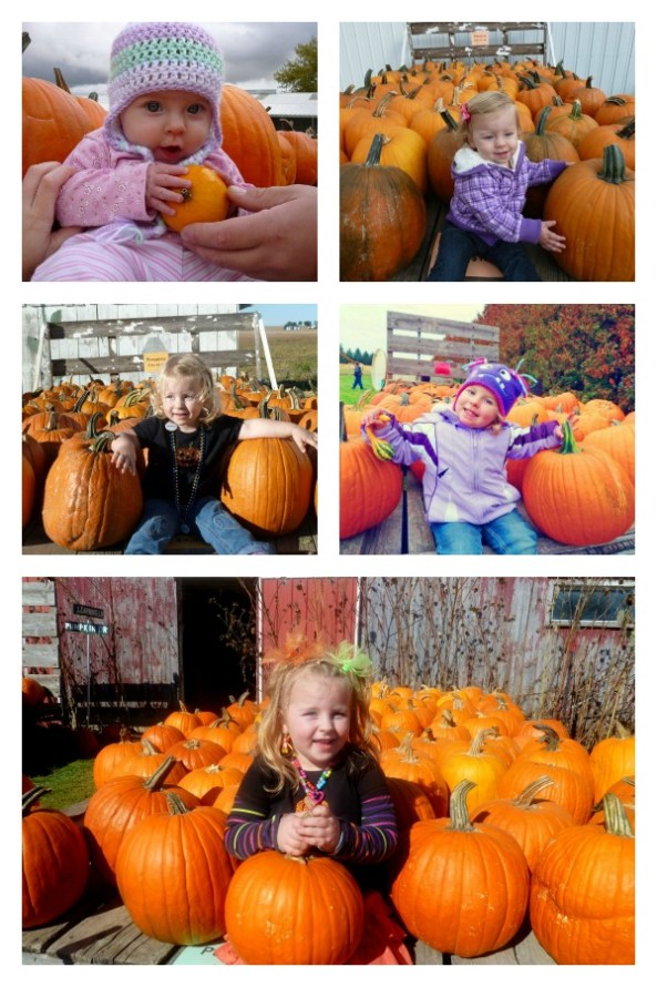 Pumpkin Patch Pizzazz 5 Years
