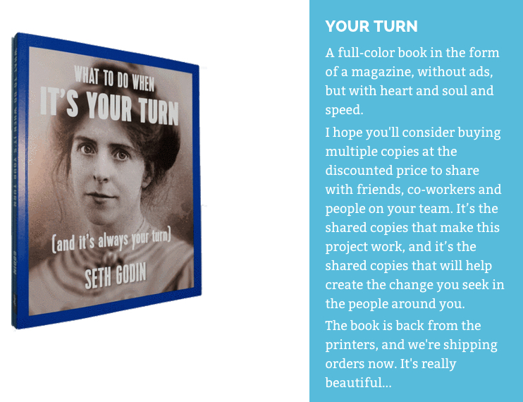Seth Godin - What to do when it's your turn book