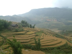 Scenery Around Sapa