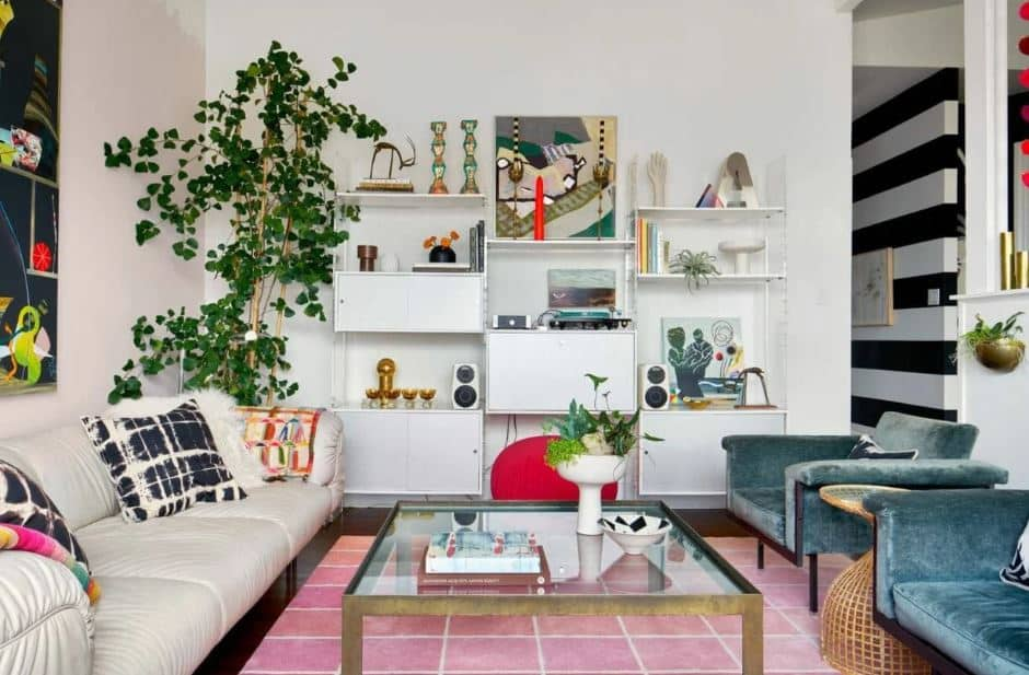 Living room with white bookcase with dividers and a plant beside it - Layout ideas for Studio apartments