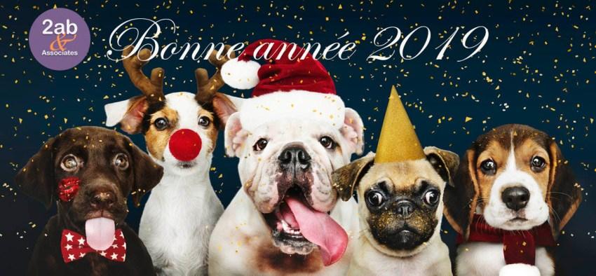 Bonne année 2019 à tous lecteurs