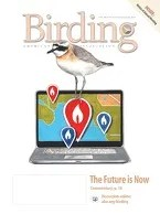 Birding Online: July 2014