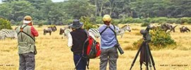 """South Africa: The Best of the """"Birding Continent"""""""