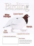 Birding Online: August 2017
