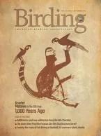 Birding Online: December 2017