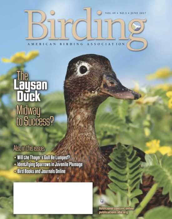 Birding Online: June 2017