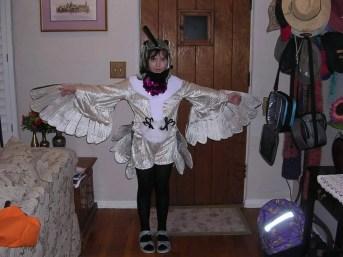 Teresa Dendy's homemade Black-chinned Hummingbird