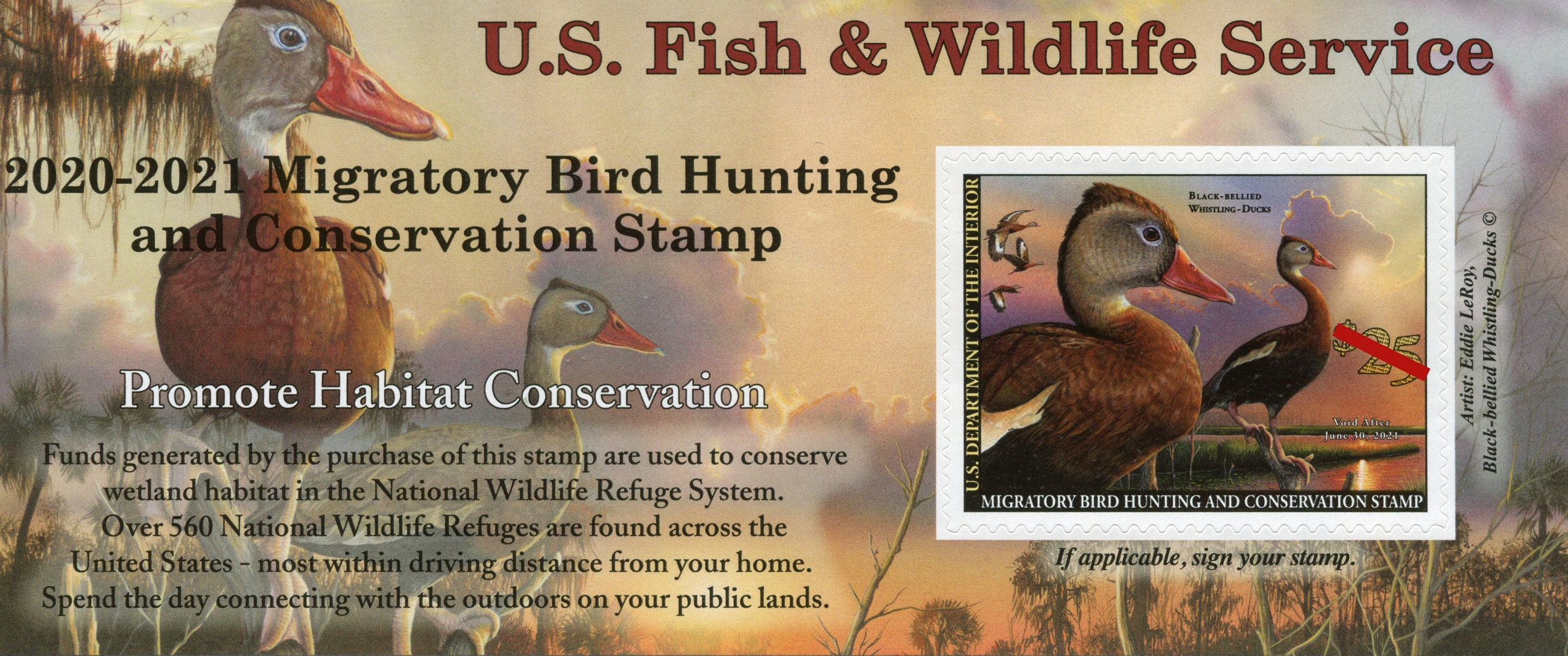 2020 Federal Us Christmas Stamps 2020 2021 Duck Stamp   American Birding Association