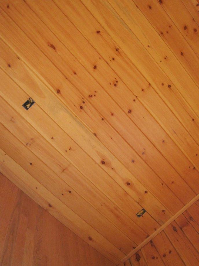 Log Cabin Ceiling Light