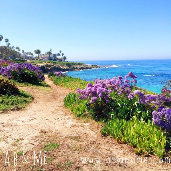 AB&Me: La Jolla Cove1