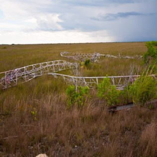 East Everglades Antennae Remains | Photo © 2009 Bullet, 2009