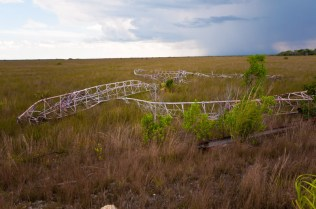 East Everglades Antennae Remains | Photo © 2009 Bullet, 2009