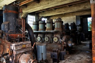 Tungston Plantation | Photo © 2015 Mike Woodfin