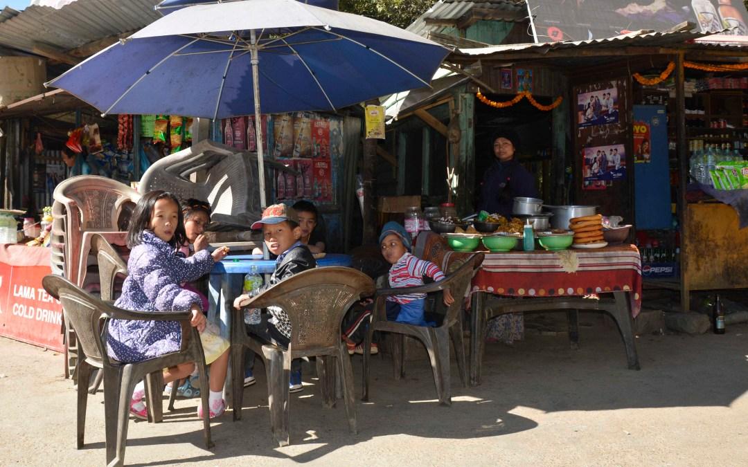 Dia de picnic en Kathmandu
