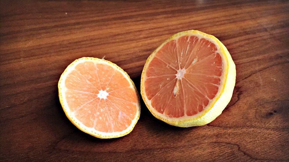 P1 - Types of Citrus
